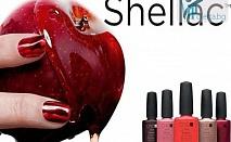 50% намаление на дълготраен маникюр със Shellac + сваляне на стар гел лак, декорации и масаж в Салон Еми