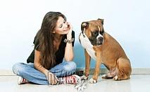 Поставяне на чип на куче/котка за 25лв от Ветеринарен кабинет Арес