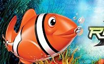 Рибка робот! Едно безкрайно забавление за Вас и Вашите деца!