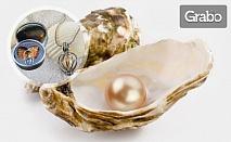 Тайнствена перла в истинска мида, в комплект с пръстен, обеци и колие, плюс кутийка в цвят по избор
